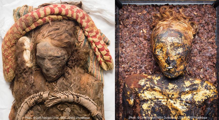 Sud-africaine sucre momie site de rencontre