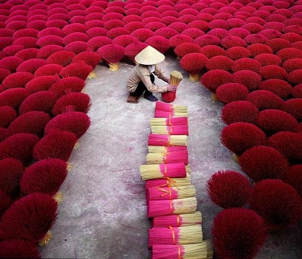 Vietnam - Récolte de bâtons d'encens  A9c193cd90ffc7416e683ddb50431295